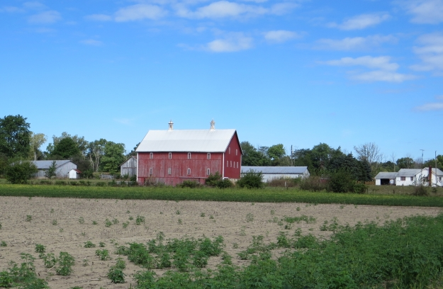 The obligatory red barn...